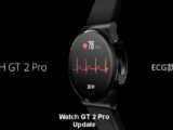 Watch GT 2 Pro, New Update Released