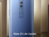 Mate 20 Lite June 2021 security update released 10.0.0.286